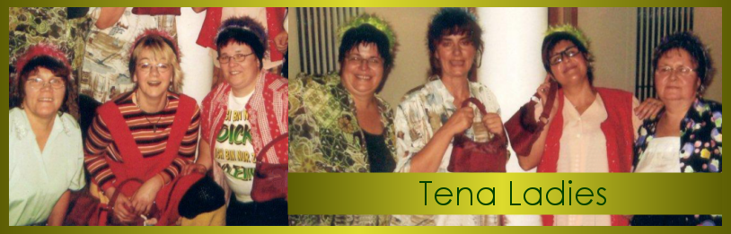 Tena Ladies